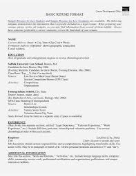 International Format Resume Basic Resume Format Resume Example International Experience