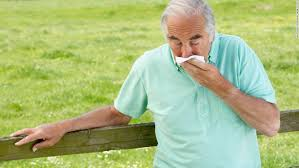 Worst U.S. cities for allergy sufferers - CNN