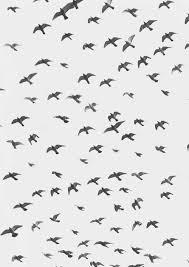 vintage bird wallpaper tumblr.  Tumblr Vintage Bird Wallpaper Tumblr  Photo16 And Bird Wallpaper Tumblr