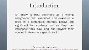 expert essay help expert essay help