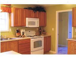 Honey Oak Kitchen Cabinets dining & kitchen restaining kitchen cabinets how to redo 8469 by xevi.us