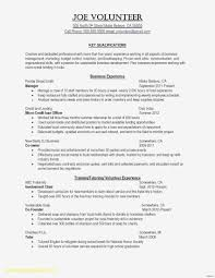 Resume Sample Mental Health Counselor New Sample College Counselor