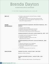 49 Unique Resume Format For Accountant Doc Awesome Resume Example