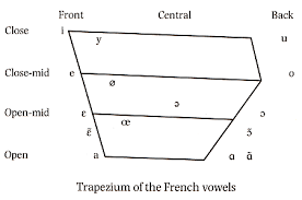 Ipa Cardinal Vowels