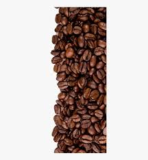 Png bas contribute / upload; Transparent Coffee Bean Clipart Black And White High Resolution Coffee Beans Png Png Download Kindpng
