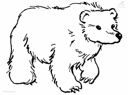 Coloring Page : Coloring Pages Bear Draw 14 On For Adults With ...