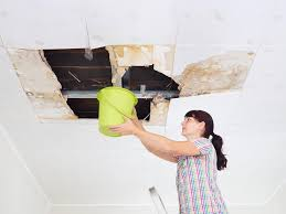 how dangerous is the mold in your home