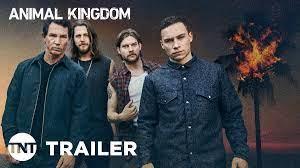 Animal Kingdom Season 5 Web Series ...