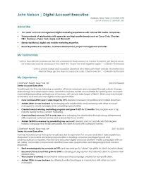 resume for account manager account executive free resume samples blue sky resumes