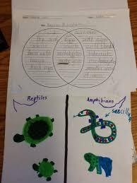 Difference Between Amphibians And Reptiles Venn Diagram Mrs Bouchers Class Venn Diagrams