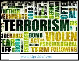 essay on terrorism in english what are terrorist groups
