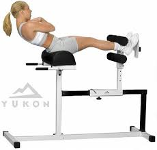 Amazoncom  XMark Ab Hyperextension And Preacher Curl Weight Hyperextension Bench Reviews