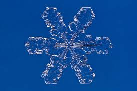 collect preserve and make snowflakes