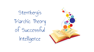 Sternberg Intelligence Sternbergs Triarchic Theory Of Successful Intelligence By