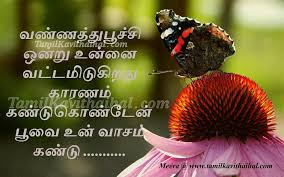 beautiful butterfly pictures with quotes. Modren Pictures Tamil Kadhal Kavithai Beautiful Butterfly Love Quotes Poo Sana Vasam  Facebook Images Download And Beautiful Butterfly Pictures With Quotes