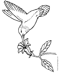 Try introducing these pictures of birds to print and colour and then get your students to create a fact file on the specific bird they have chosen! Coloring Pages Of Birds