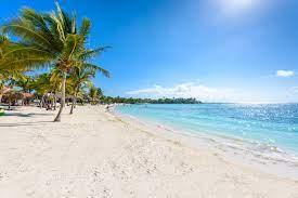 Playa para perros del Nizúc, México - PlayasparaPerros.Com