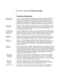 Resume Career Summary Examples Professional How To Write A Statemen