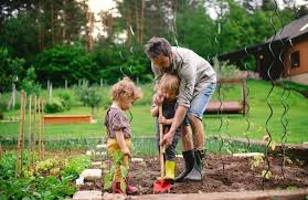 is now a good time to start a home garden