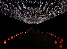 Halloween Lights Wichita Ks A Lighted Path And Ceiling Of Lights At Botanica Gardens In