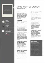 Pages Resume Template Interesting Professional Modern CV Template For Pages Free IWork Templates