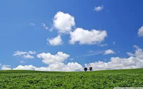 Landscape Hokkaido Japan Ultra Hd Desktop Background