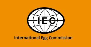 """Participación en el programa """"Young Egg Leaders""""   Ovostar   Noticias"""