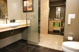 bath accessories for handicapped. decoration ideas. archaic design ideas using rectangular glass shower doors and white sinks also bath accessories for handicapped l