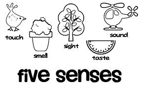 Senses Coloring Pages