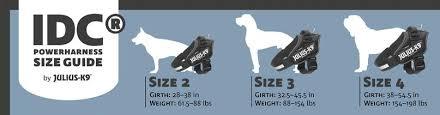 Large Size Dogs Las Vegas K9 Inc