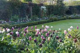 Small Picture Garden Design Garden Design with Midwest Gardening Plant
