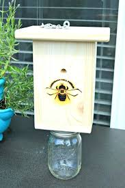 pair of carpenter bee traps 2 trapping machines in home garden yard outdoor living gardening supplies