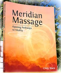 Chinese Meridian Chart Pdf Acupressure Chart Pathways And Points Of Meridian Massage