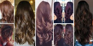 Green Light Luxury Hair Color Chart The 23 Best Brunette Hair Color Shades