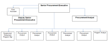 Procurement Department Organization Chart Procurement Executive