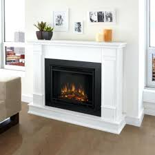 Decor  Electric Fireplace Log Inserts Uncommon Electric Fireplace Large Electric Fireplace Insert