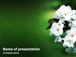 Spring Powerpoint Blooming Cherry Tree In The Spring Free Presentation