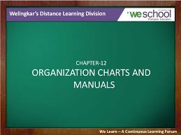 Types Of Organizational Chart In Management Organization Manuals Principles Of Management