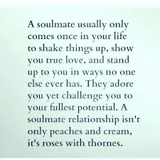 That Why Roses Represent Real Unconditional Love Relationships Magnificent Unconditional Love Uote