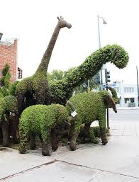 Image result for topiary john brooker