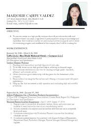 Accountant Cv Sample Uae Professional Resume Templates