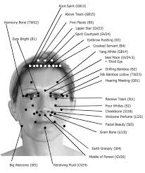 Acupressure Face Chart This Facial Acupressure Chart Shows All The Acupressure
