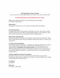 college life experience essay co college life experience essay