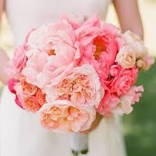 peony bulbs jumbo bridal bouquet