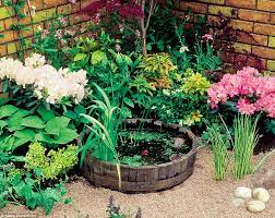 wildlife pond for your garden or patio