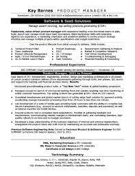 Digital Marketing Resume Sample New Digital Marketing Project Manager Resume Example Original R Ukashturka