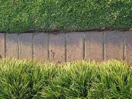 bricks as garden edging lovetoknow
