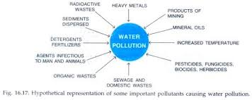 essay on water pollution in types pollution environment important pollutants causing water pollution