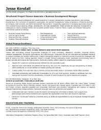 Financial Resume Adorable Finance Position Objective Resume For Hotel Amazing Director Of Your