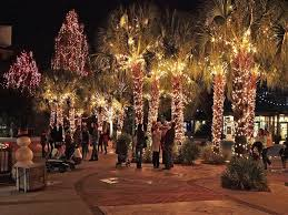 christmas tree lighting ideas. Image Of: Outdoor Tree Ornament Christmas Lights Lighting Ideas